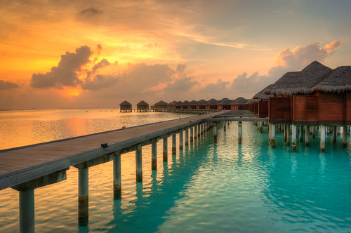 wallpaper maldives honeymoons maafushi northcentralprovince maldvies
