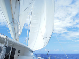 Tonga Offshore-28