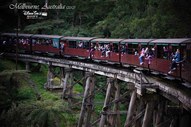 Day 2 Melbourne, Australia - Puffing Billy 14