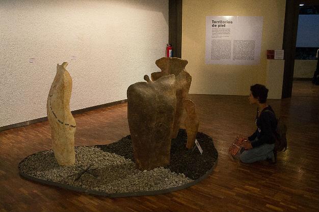 Inauguran con gran éxito de la exposición Territorios de Piel, de la pintora María José Lavín