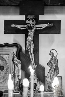 Божественная литургия 295