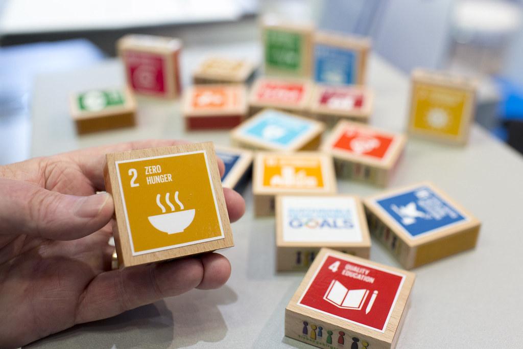 Sviluppo sostenibile - Photo credit: Esplora Crea Invia Foto, persone o gruppi Carica Accedi Registrati Global Festival of Action for Sustainable Development