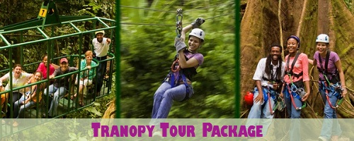 St. Lucia Tranopy Tour Package