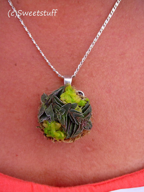 Succulent necklace by Laura Balaoro