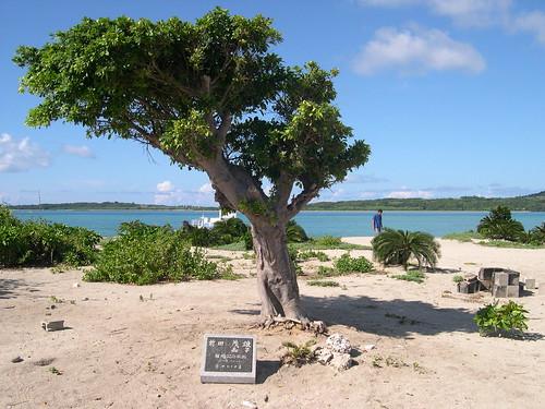 【写真】離島めぐり : 嘉弥真島