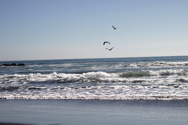 seaside14