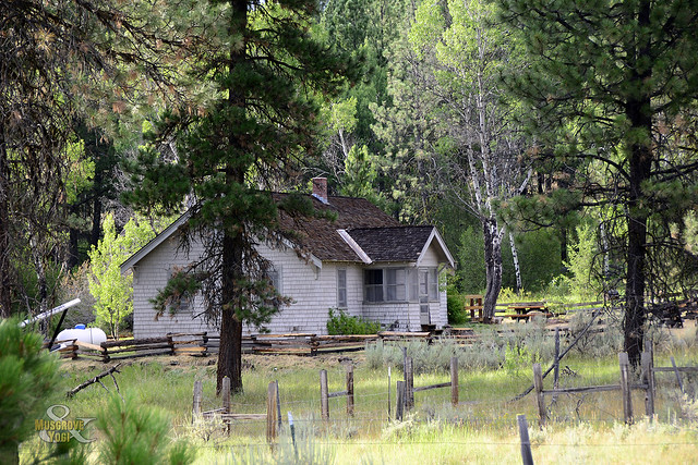 Cabin In The Woods Cold Springs Guard Station Ochoco