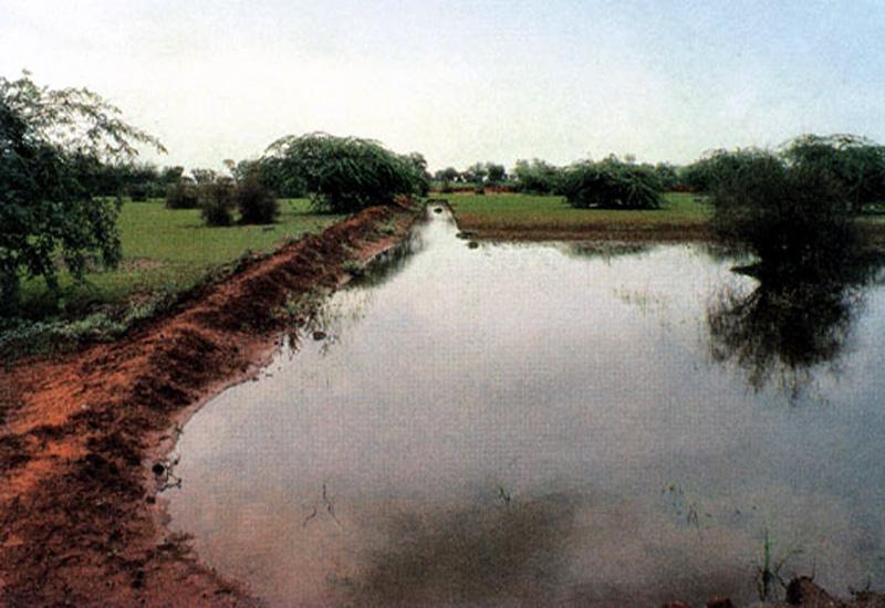 लापोड़िया गांव का तालाब