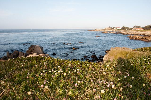 california 2013-36