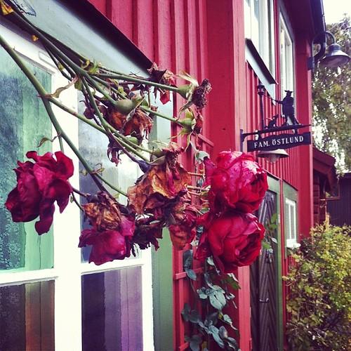 Djäknegatan, fast i Västerås.