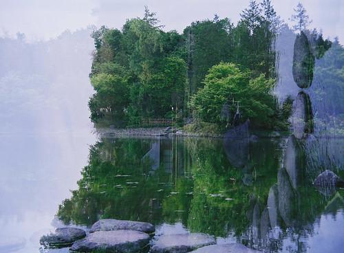 散策 [昭和記念公園] : 中判蛇腹カメラ リコーシックス