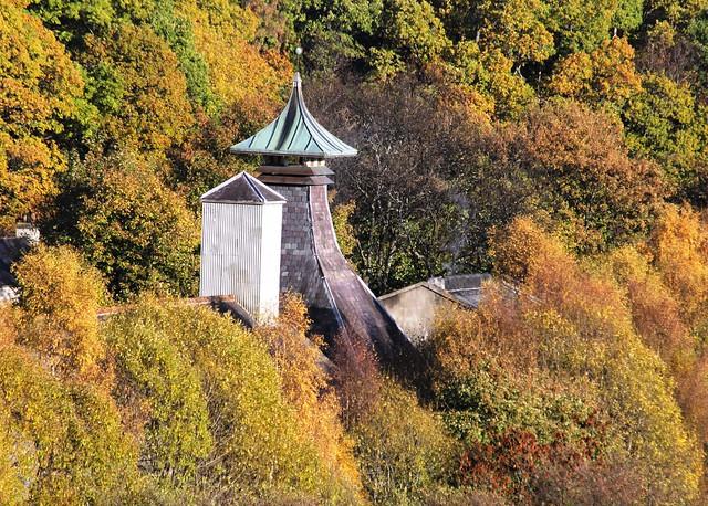 Moray Autumn