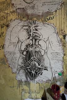 Anatomie du corps humain selon Da Vinci DDC_9536