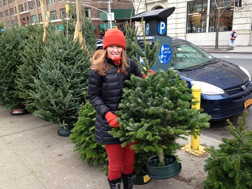 Getting the Christmas tree