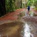 Rain in Marin 2014