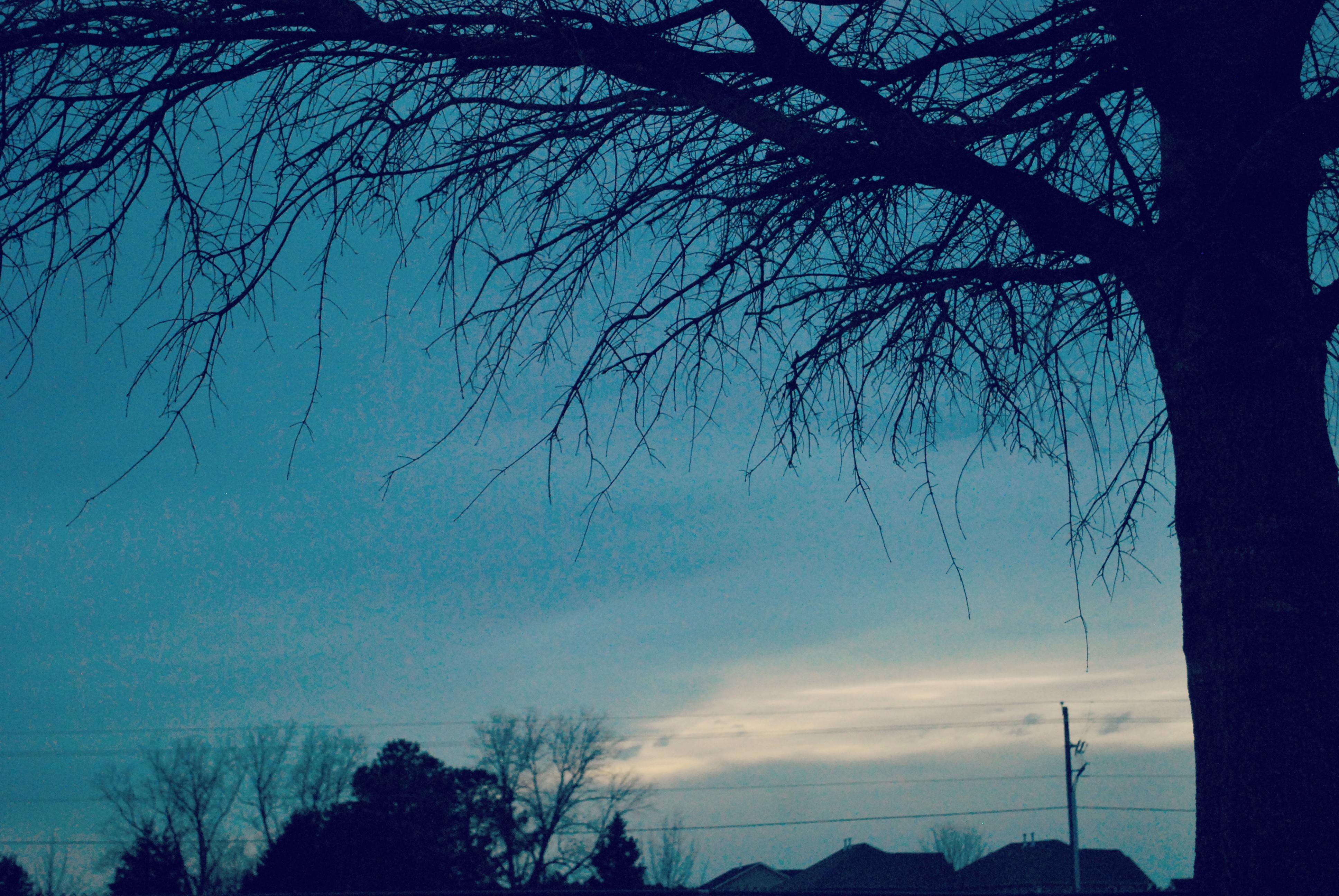 Blog_2014 465