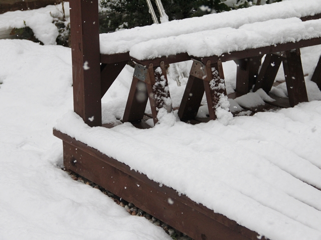 愛知県も雪が降り積もっています!