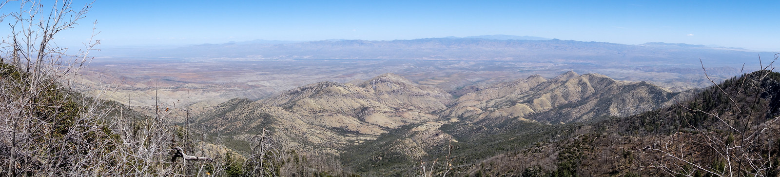 1404 Looking down into the Peck Basin Area from the Butterfly Trail