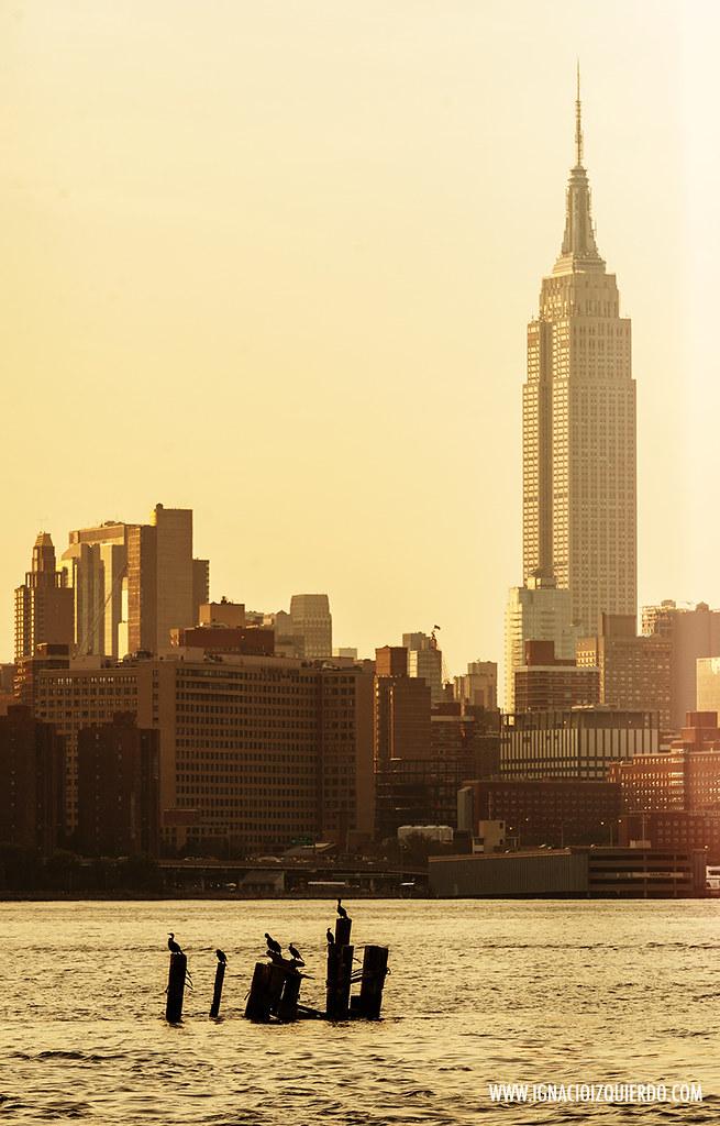 New York Magic Hours 09