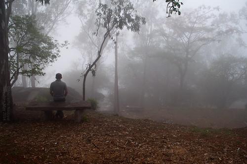 morning india mist sunrise woods bangalore karnataka nandihills nikond90 nandibetta
