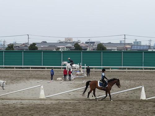 小倉競馬場の乗馬センター角馬場での練習の様子