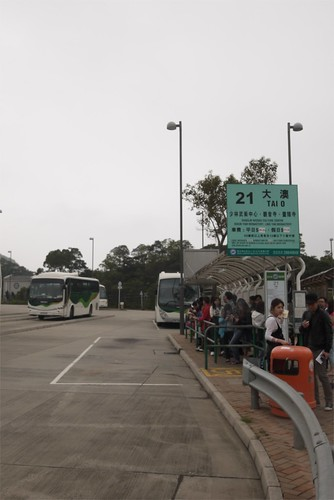taking the bus to Tai O