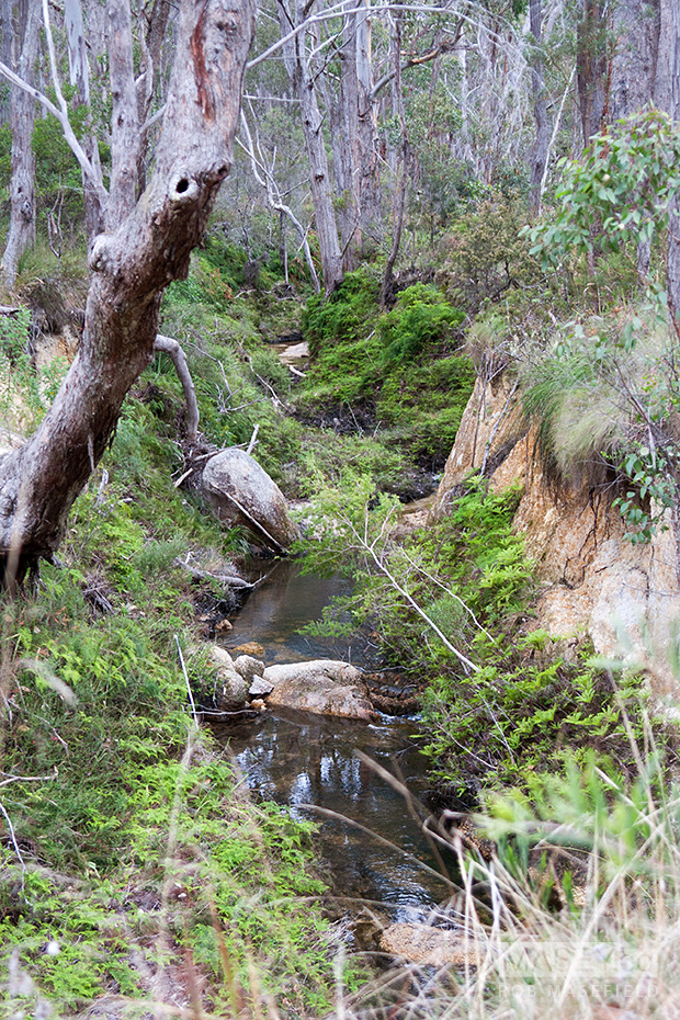 Crossing one of Bald Rock National Park's many streams and rivers.