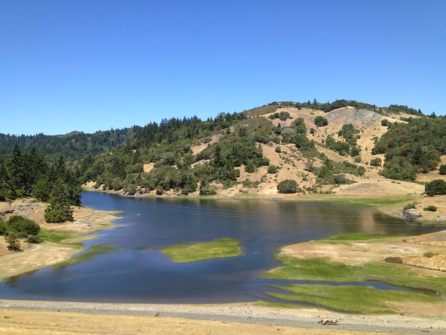 Alpine Lake, Mt. Tamalpais Watershed