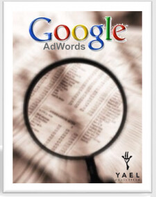 yaelconsulting,google adwords expert
