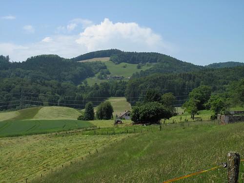 Mont Pélerin - Palézieu (17.06.13) 56