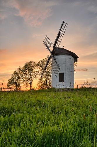 trees sunset windmill warm somerset chapelallerton sedgemoor ashtonmill wedmore isleofwedmore snshdr