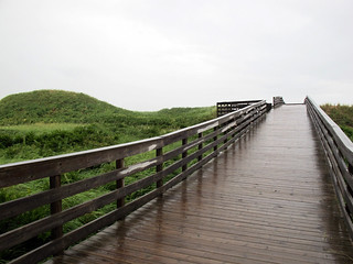 rain @ pei national park