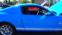 boss 302 mustang(0.0), bumper(0.0), automobile(1.0), automotive exterior(1.0), wheel(1.0), vehicle(1.0), automotive design(1.0), rim(1.0), shelby mustang(1.0), land vehicle(1.0), muscle car(1.0), sports car(1.0),
