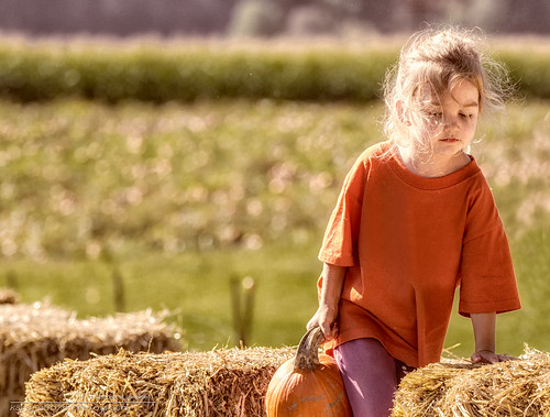20131006_PumpkinPatch_IMG_7242-Edit-2_KCP by KarenCookePhotography