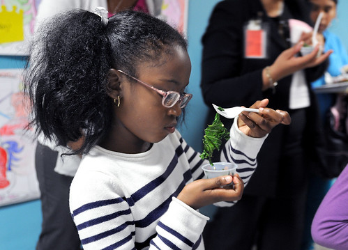 Dime Rosser, 7, a student at Clinton Elementary School, takes a look at kale. Photo courtesy of Spencer Ainsley, Poughkeepsie Journal.