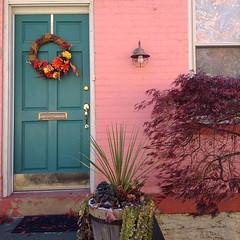 Found the cutest row houses with @roaringangelina in the Northside last week. #cincinnati (1/5)