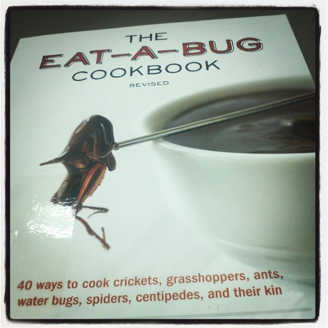 323.365 {Bug Cookbook....really?}