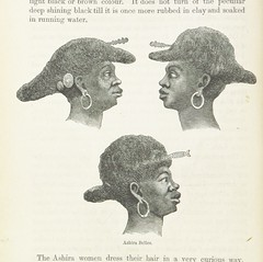 """British Library digitised image from page 508 of """"Explorations and adventures in Equatorial Africa; with accounts of the manners and customs of the people and of the chace of the gorilla, crocodile, leopard, elephant, hippopotamus and other animals. (Seco"""