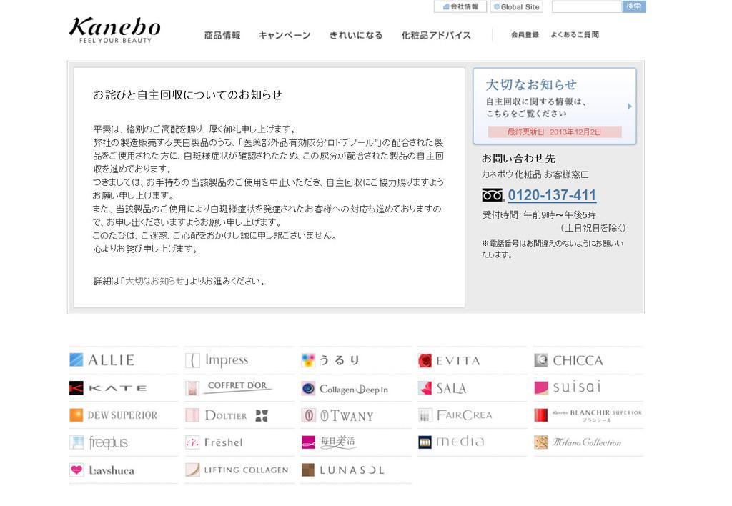 カネボウ化粧品 - Mozilla Firefox 06.12.2013 205806