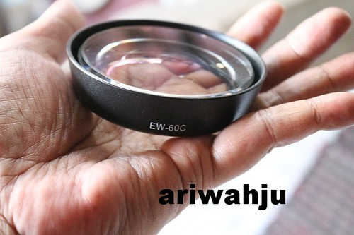 DIY Fisheye lensa