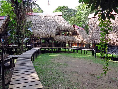 Jamu Lodge Cuyabeno Rainforest