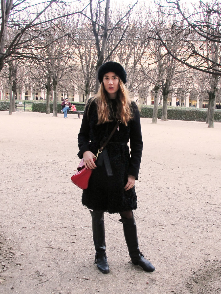 Paris January 2014