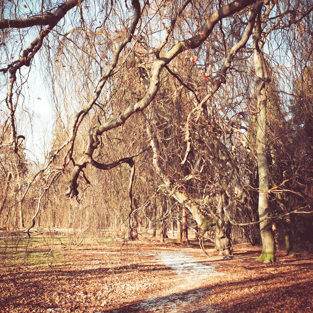 Im Helfenberger Park