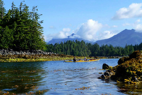 Hand Island, Broken Group Islands, Barkley Sound, Pacific Rim, Vancouver Island, British Columbia, Canada