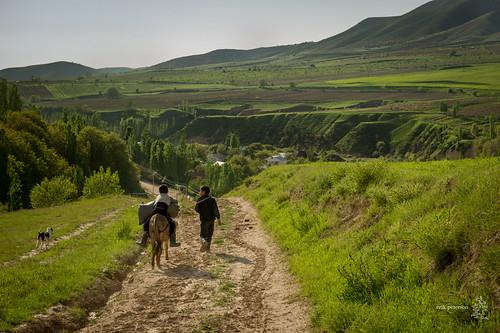 camping green village hiking donkey dirtroad uzbekistan tashkent 2013 erikpeterson kumishkan