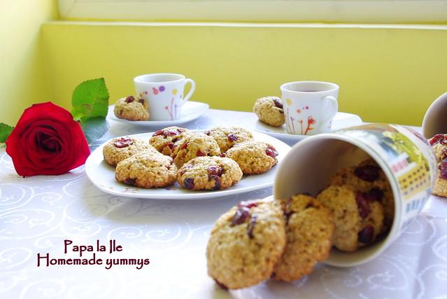Biscuiti de ovaz cu merisoare (8)
