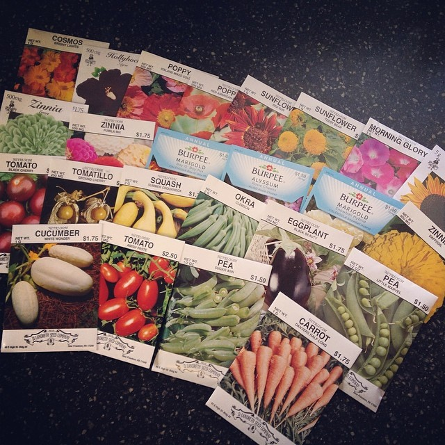 I got plans for you, garden. #spring #garden #flowergarden #veggiegarden
