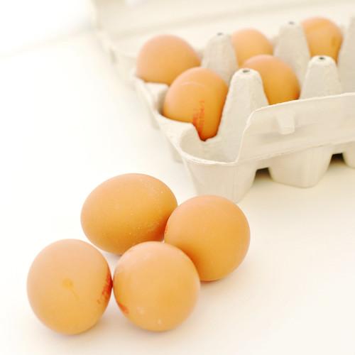 egg_dye_tojasfestes_01