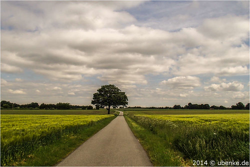 _countryside