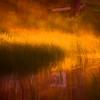 Dans les herbes colorées...!!!